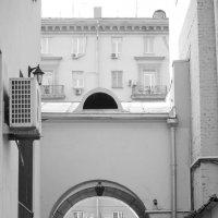 Из двора :: Отто Шельник