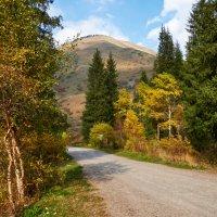 Осень в горном ущелье :: Сергей Рычков