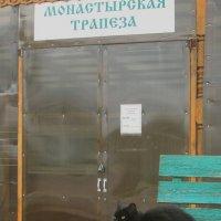 Где же там кормилица? :: Михаил Попов