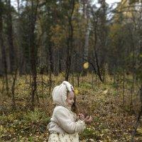 В лесу. :: Виктория Пашкова