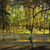 Уголок в парке :: юрий Амосов