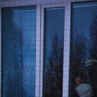 История созданная окном :: Георгий Морозов