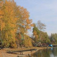 Осень на острове. :: Андрей