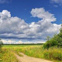 Дорога,уходящая в поля :: Валерий Талашов