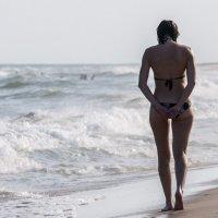 near the ocean :: Dmitry Ozersky
