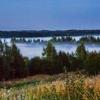 Туман :: Ирина Т