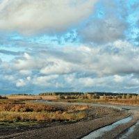 Извилистая дорога :: Дмитрий Конев