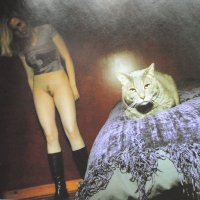 Кошка :: Борис Александрович Яковлев