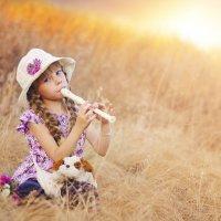 Мелодия заката :: Катерина Терновая