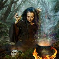 Ведьма за работой :: Виктор Седов