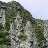 Каменные грибы :: Вадим