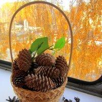 Осенний натюрморт . :: Мила Бовкун