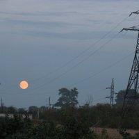 Луна качалась на качелях. :: Ирина Королева