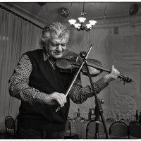 о чём плачет скрипка... :: Сергей Демянюк