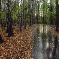 Осень по-настоящему :: Андрей Лукьянов