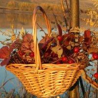 Я собрала букет осенних листьев... :: nadyasilyuk Вознюк