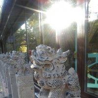 Скульптура китайских драконов в Александровском саду в Петербурге. :: Светлана Калмыкова