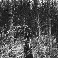 В лесах тьмы :: Анна Коняхина