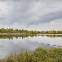 Осень :: Алексей Снедков