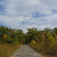Дорога в осень. :: Ксения Довгопол