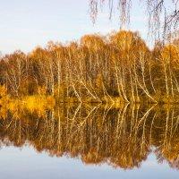 Осень :: evgeny