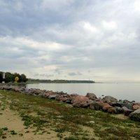 Финский залив :: Елена Шемякина