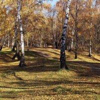 В старом городском парке :: Александр Попов