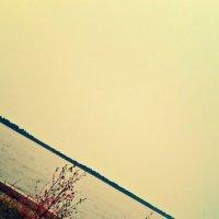Озеро Бармашовое :: Lidiya Stupid