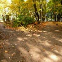 сегодня в парке :: Galina Belugina