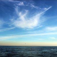 Кораблик в небе :: Татьяна Пальчикова
