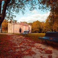 Осень в парке :: Artūras
