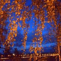 Ночь над городом :: Борис Гуревич