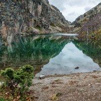 Осень в Хибинах 8 :: Алексей Видов