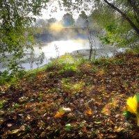 Пора рассветов октября....5.. :: Андрей Войцехов