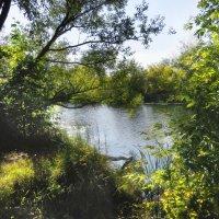 Река Усманка :: Тамрико Дат