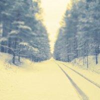 Первый снег 1 :: Сергей Воронков