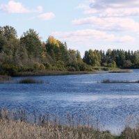 Река :: Наталия Зыбайло
