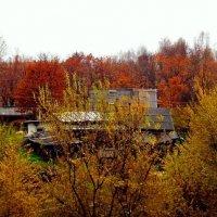 В Осени утонувший... :: Милла Корн