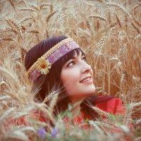 Поле пшеничное. :: Николай Шейкин