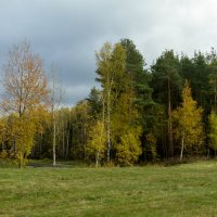 Осень на опушке краски разводила... :: Yuri Chudnovetz