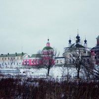 Свято-Троицкий Белопесоцкий женский монастырь :: Светлана Гущина