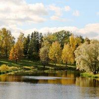 Воскресенье в парке :: Олег Попков