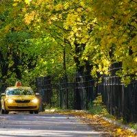 Такси ОСЕНЬ :: Oleg Ko