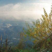 тихо, холодно, туман... :: sergej-smv