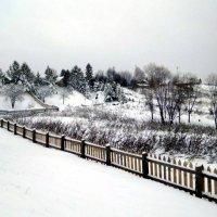 Графика внезапной зимы :: Николай Туркин