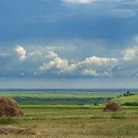Сенокосная пора :: Виктор Четошников