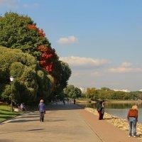 Осень в парке городском. :: Маргарита ( Марта ) Дрожжина