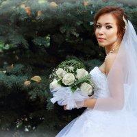 Диана... :: Любовь Кастрыкина