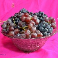 Мій виноград :: Юрій Федчак