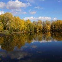 Яркий октябрь :: Наталия Григорьева